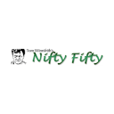 Nifty Fifty at Stockomendation